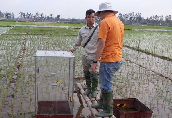 Nghiên cứu công nghệ quản lý nước cho mặt rộng